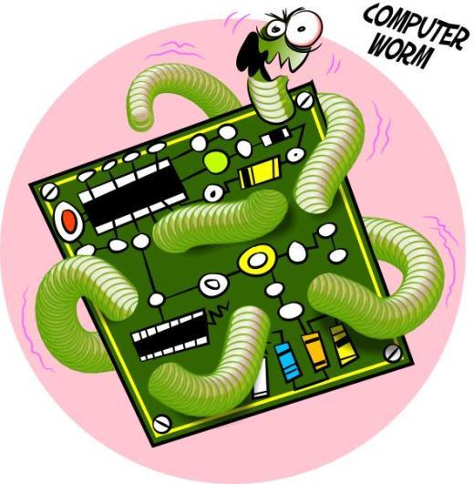 computer_worm11